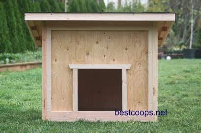 giant house plans giant dog house plans large dog house plan 1 ebay ideas for the house