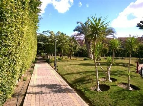 شركة صيانة حدائق و تنسيق حدائق بالسعودية landscape شركة