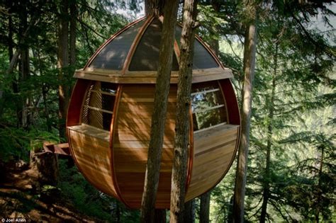 Treehouse In Seattle - a treehouse gone viral price tags