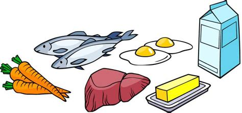 in quali alimenti si trova la vitamina a gli alimenti pi 249 ricchi di vitamina a forumsalute it