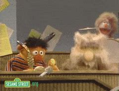 rubber st gif rubber ducky gifs search find make gfycat gifs