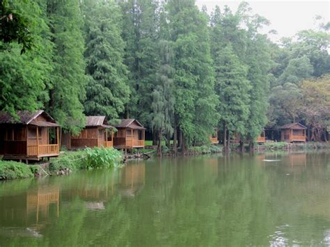 Fishing Cabins In by Fishing Cabins For Rent Picture Of Liangfeng River