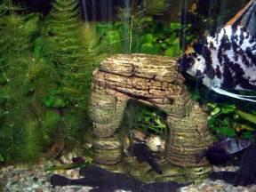 fish tank decor types of decorations for aquariums
