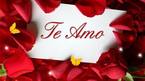 imagenes rosas de amor frases romanticas de amor para dedicar con imagenes de