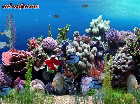themes for windows 7 aquarium free animated aquarium desktop wallpaper wallpapersafari