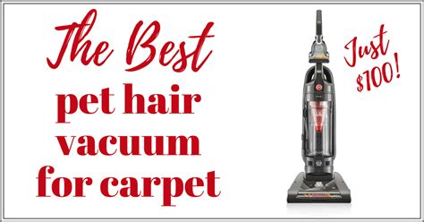 best vacuum for pet hair on carpet and hardwood floors best pet hair vacuum for carpet and upholstery