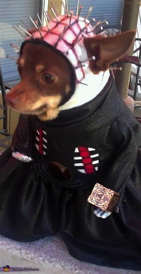 hellraiser pinhead costume  dogs