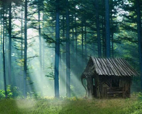 Forest Cabin by Forest Cabin House By Gr3yfx1997x On Deviantart