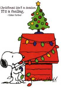 merry christmas jana says