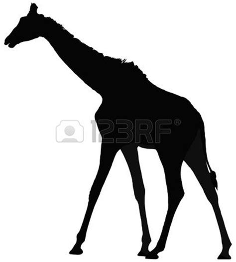 17 Meilleures Id 233 Es 224 Propos De Silhouette De Girafe Sur