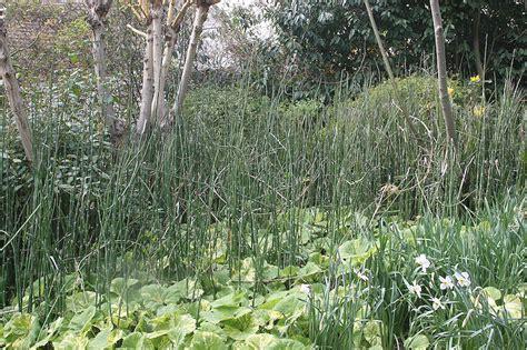 Horticulture Et Jardins by Horticulture Et Jardins Par Alexandre Risser L