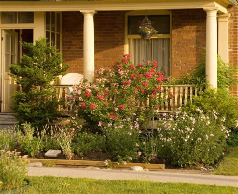 Love The Wildflower Look Of This Flower Bed When We Pull Flower Gardening For Dummies