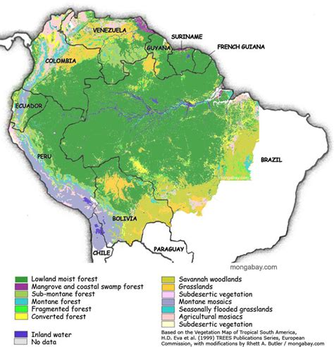 rainforest map rainforests