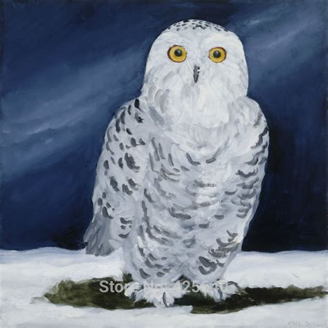 white owl home decor aliexpress com buy home decor snowy owl painting home