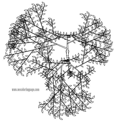 coloring page of a cherry tree cherry tree coloring page wecoloringpage