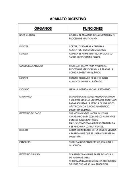 Resumen Y Sus Partes by Tabla Resumen Aparato Digestivo Y Funciones