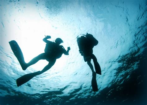 how to become a instructor how to become a scuba dive instructor of the worlds