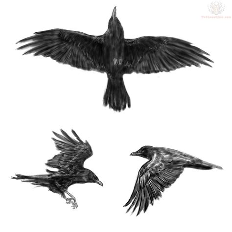 crow tattoo design 40 tattoos designs and ideas