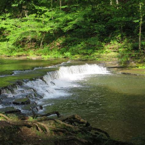 cabinets to go lawrenceburg tn david crockett state park lawrenceburg tn top tips