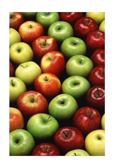 alimentazione crudista dieta crudista o food dieta zona personalizzata