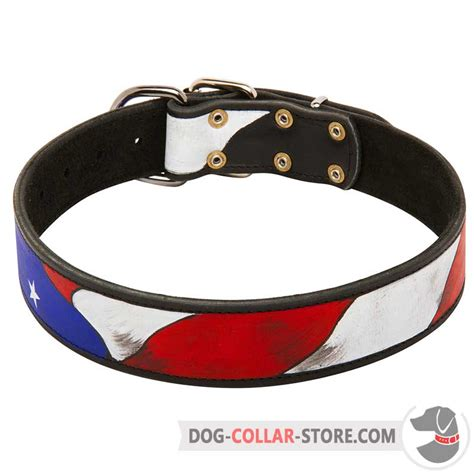 Handcrafted Collars - handpainted leather collar walking