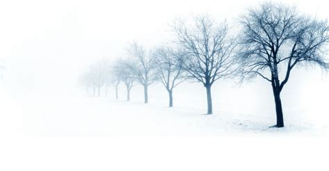 9 Ways To Survive Winter by 9 Ways To Fight January Depression Vocations
