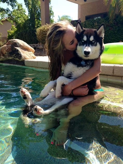 puppies with blue husky puppies with blue tumblrhusky wallpaper pin by chelsie on ruff