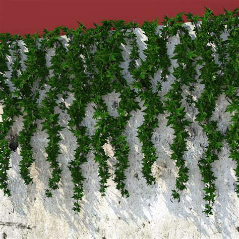 hanging plants 3d model wall hanging plant