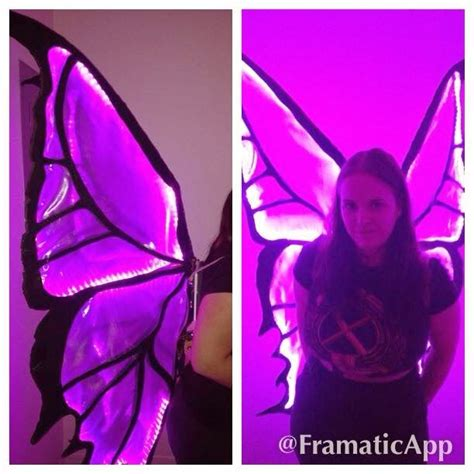 light up butterfly wings 37 best stockton ca images on pinterest