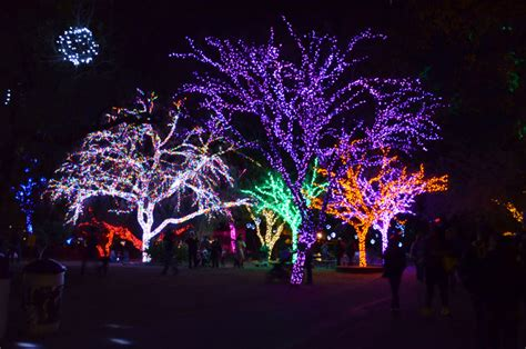 Christmas In Phoenix Christmas Lights Restaurants Open Zoo Light