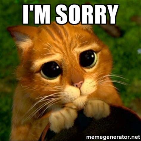 Im Sorry Meme - i m sorry puss in boots or shrek cat meme generator