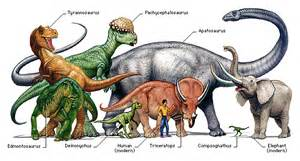 The first dinosaur to be named the first dinosaur to be named was