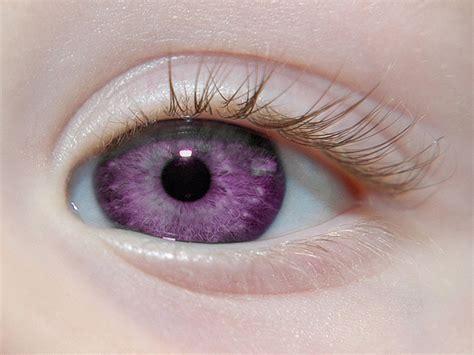imagenes hermosos ojos los ojos m 225 s hermosos y extra 241 os del mundo youtube