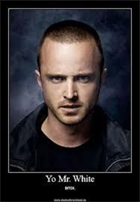 Jesse Pinkman Memes - 1000 images about breaking bad cool and funny stuff on