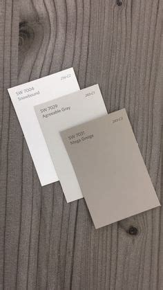 repose gray  agreeable gray paint colors  home