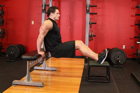 tricep bench dips bench dips exercise guide and video
