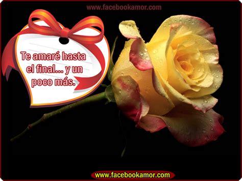 imagenes de rosas verdes con frases rosas con frases de amistad imagenes de flores de rosa