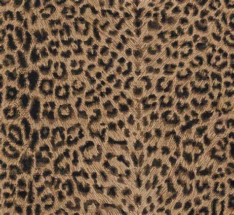 Leopard print kitchen feed kitchens