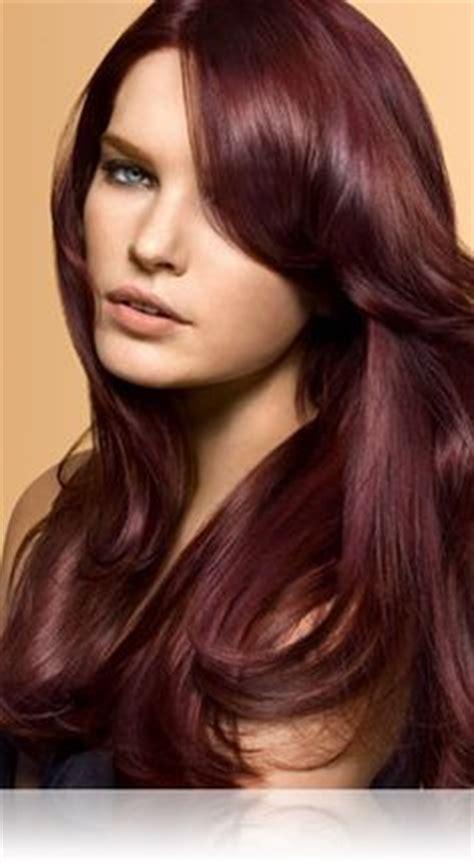 medium burgundy brown hair color images 1000 images about burgundy hair on pinterest burgundy
