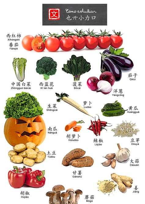 4 vegetables in asian vegetables name list related keywords asian