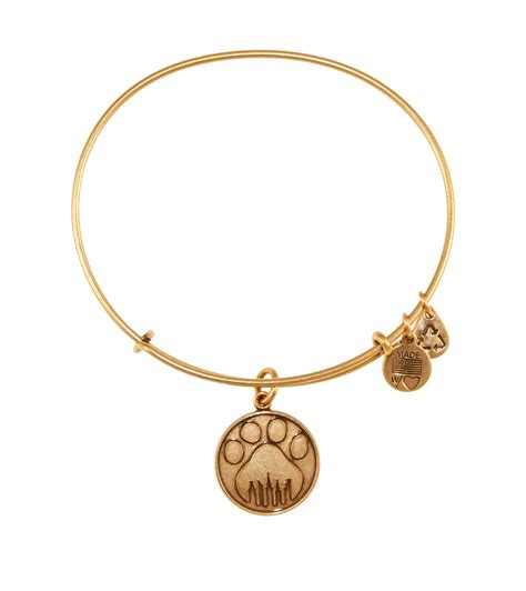 alex and ani charity by design charms addict