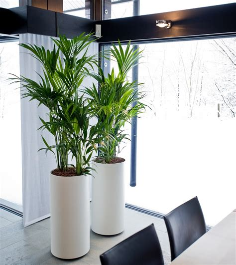 Pflanzgefäße Zum Hängen 1387 pflanzgef 228 223 e zimmerpflanzen bestseller shop