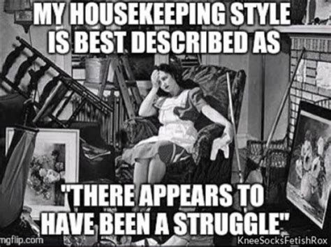 Housekeeper Meme - funny pictures of the day 35 pics