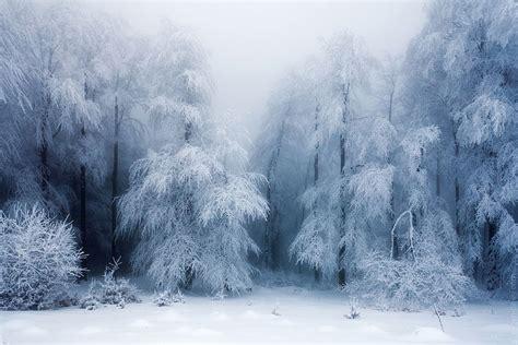 imagenes bonitas de invierno hermosas imagenes de paisajes de invierno de todo el
