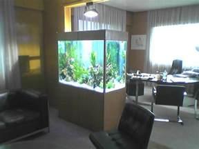 aquariophilie fabricant d aquarium sur mesure