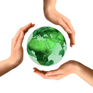 green column importance of environmental csr initiatives