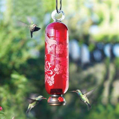 parasol red filigree hummingbird feeder the birdhouse chick