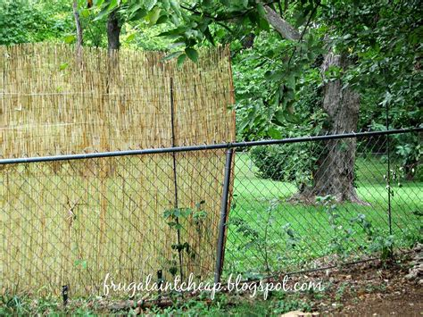 hometalk reed fence turns chain link into a privacy fence