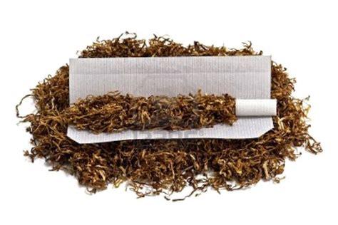 Buku Bugar Dan Cantik Dengan Terapi Air Putih Dan Infused Water Rz tips berkebun 7 manfaat tembakau untuk tanaman