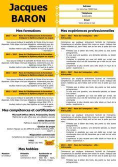 Exemple Lettre De Motivation Kin cv gris cv grande capacit 233 cv comp 233 tences cv king size